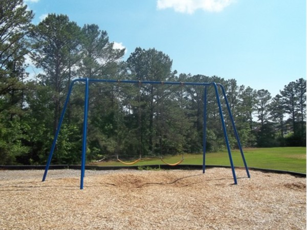 Swings at Phelps Center playground
