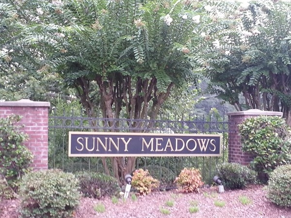 Beautiful Sunny Meadows in Shelby County, Alabama...the name says it all!