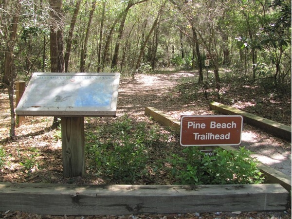 Enjoy a hike to the beach via the Pine Beach Trailhead located on Ft. Morgan Road