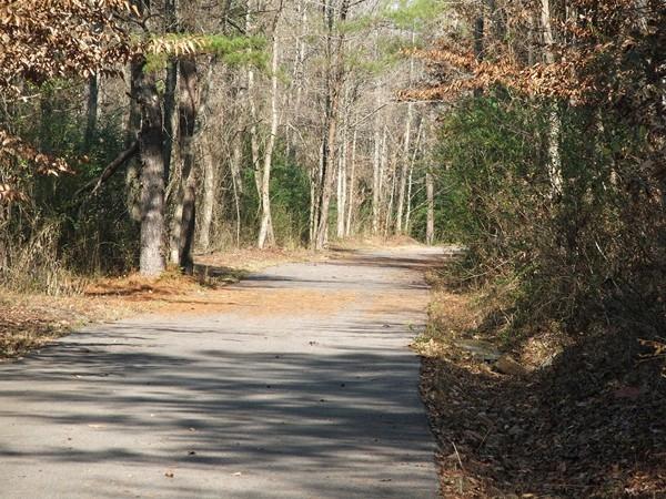Fall walk on the Hillsboro Appleford trail