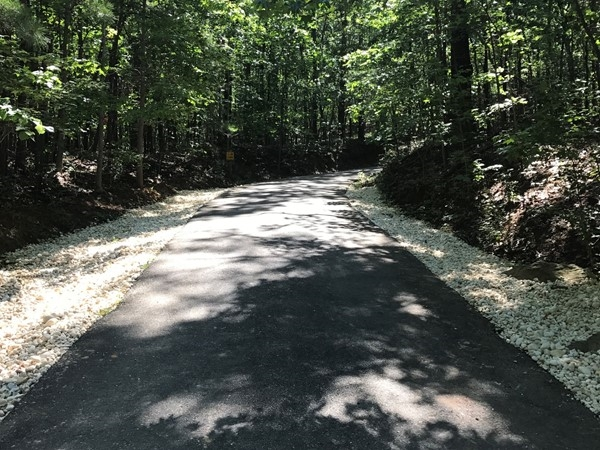 Road to Spoonwood Lake