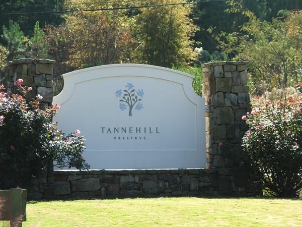 Tannehill Preserve - Tannehill Entrance