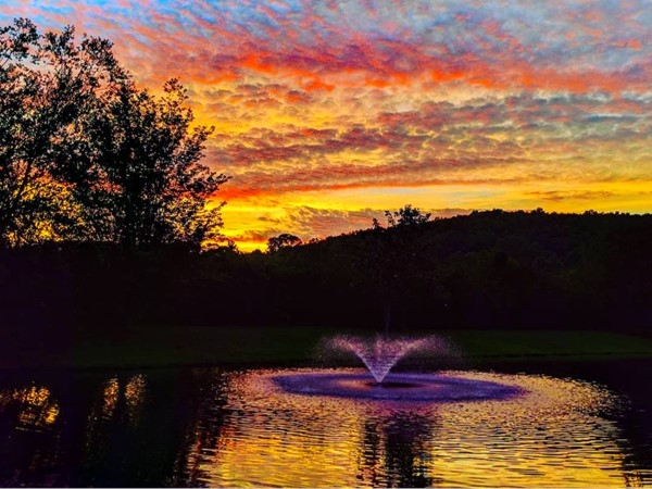 Beautiful sunset over one of the ponds in Cheval off Dug Hill Road