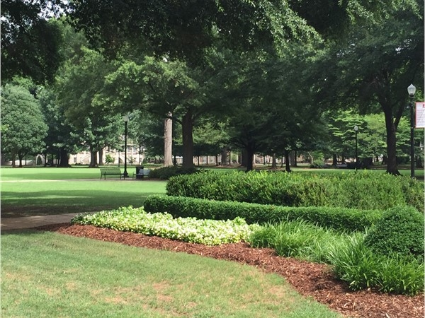 The Quad at the University of Alabama