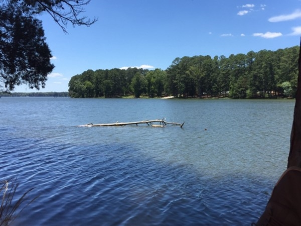 Thinking of retiring in the Shoals area? We have the greatest lakes in Alabama