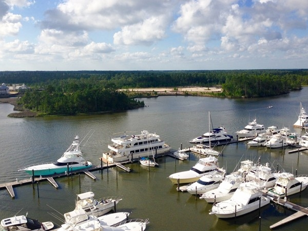 The Wharf Marina on the ICW