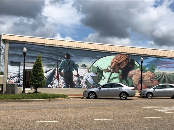 Downtown Boll Weevil Mural