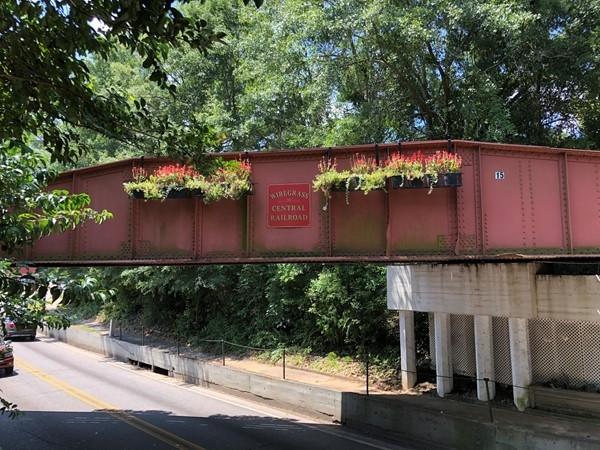 Wiregrass Central Railroad