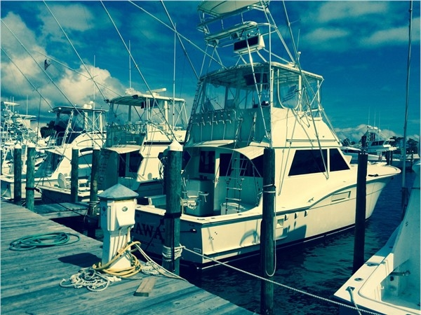 Looking for great fishing? Look no further than Getaway Charters at Sportsmans Marina!