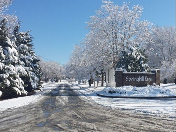 Lovely snowfall at Springhill Farms