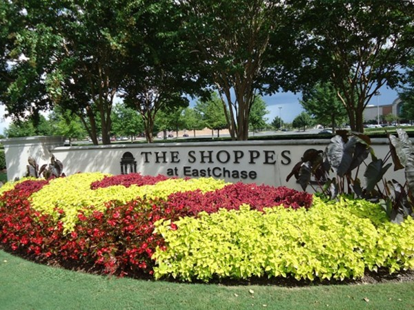 Shop til you drop at the Shoppes at East Chase