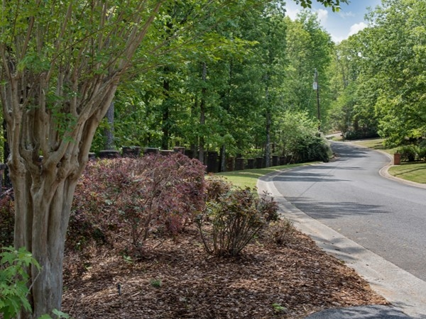 A nature lover's paradise. Windwood Estates' homes have at least three acres of wooded nature