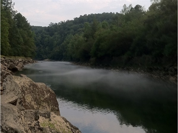 Sipsey river for trout fishing trussville al for Trout fishing in alabama