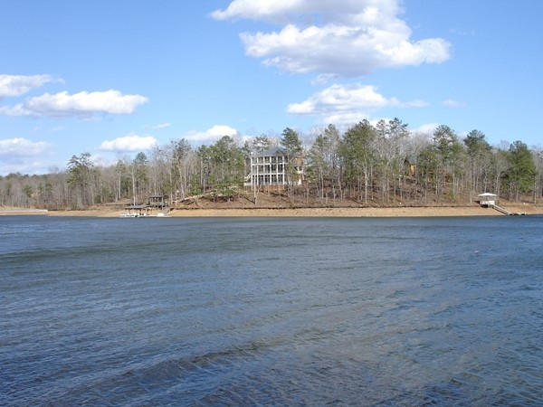 Shoreline during winter months on Lake Wedowee is still beautiful