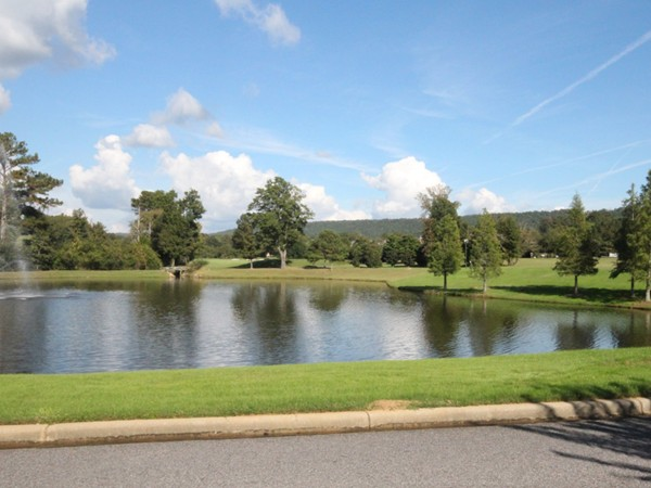This is one of the spectacular lakes in Greystone Legacy