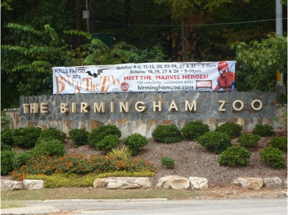 should zoos be booed Boo at the zoo is designed to create special memories for your family, not necessarily to bring home the biggest haul of candy kids can expect to visit about a dozen treat stations, collecting 1-2 pieces of candy at each please note, trick-or-treating is intended for children only.