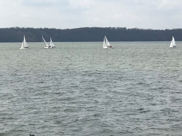 Regatta on beautiful Wilson Lake