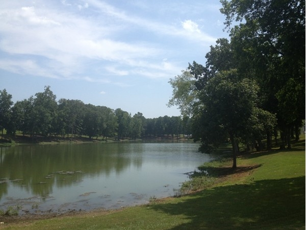 Great fishing hole in North Alabama at Sharon Johnston Park