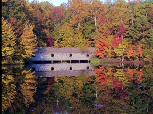 Enjoy the beautiful colors of autumn leaves at Green Mountain Nature Trail