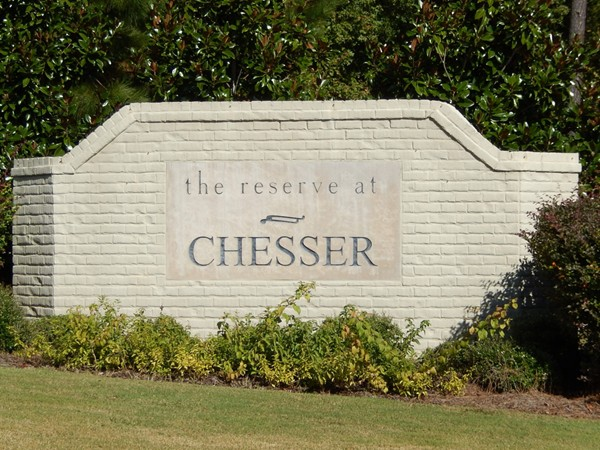Chesser Reserve Townhomes