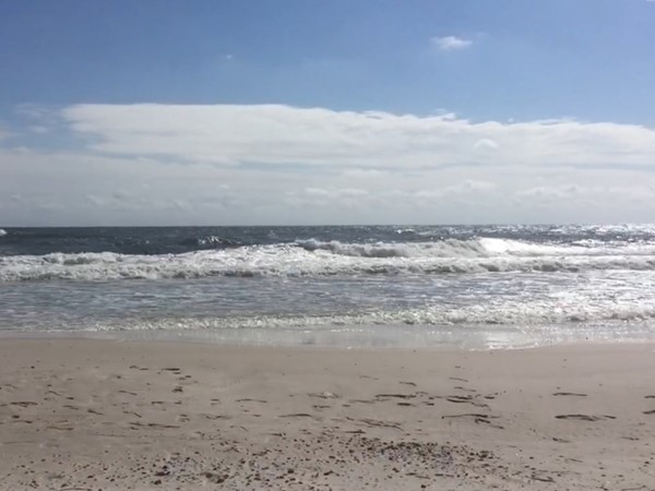 A little chilly, but a beautiful day for a walk on the beaches of Gulf Shores
