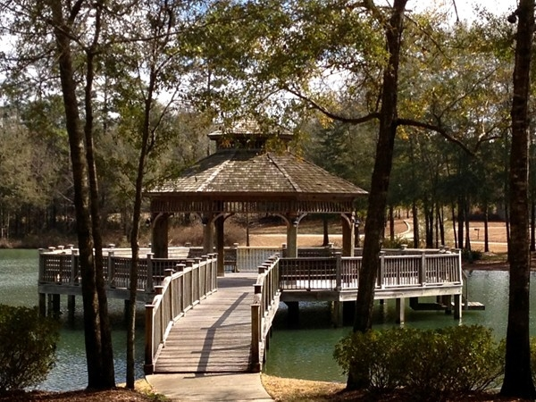 The Woodlands neighborhood gazebo perfect for parties!