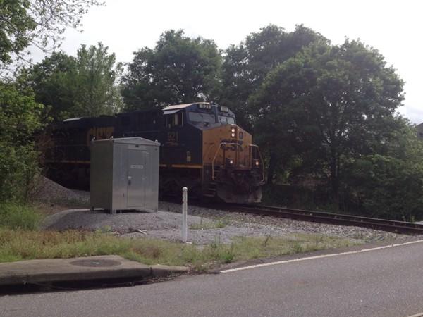 Train watching in Pelham