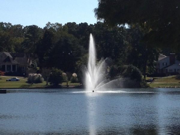 Beautiful day at Star Lake