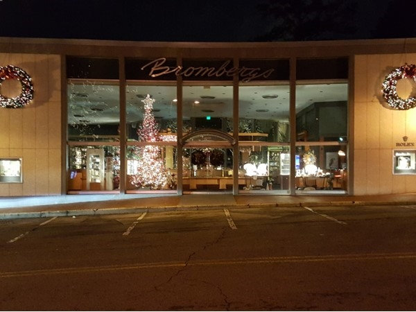 Reflection of the tree in the Bromberg's window