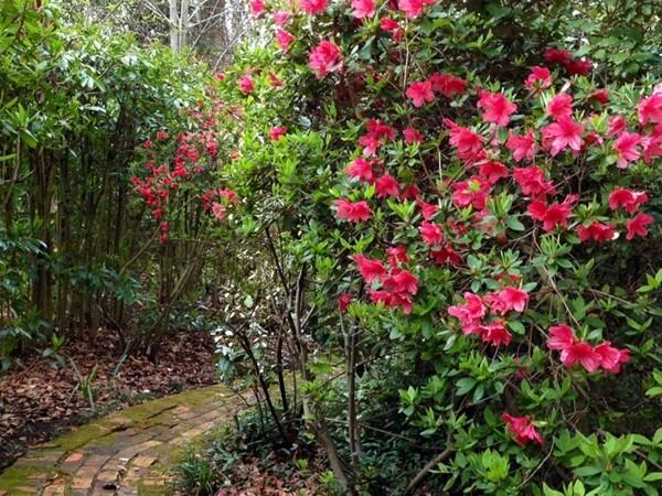 Gardens at Grace Episcopal Church