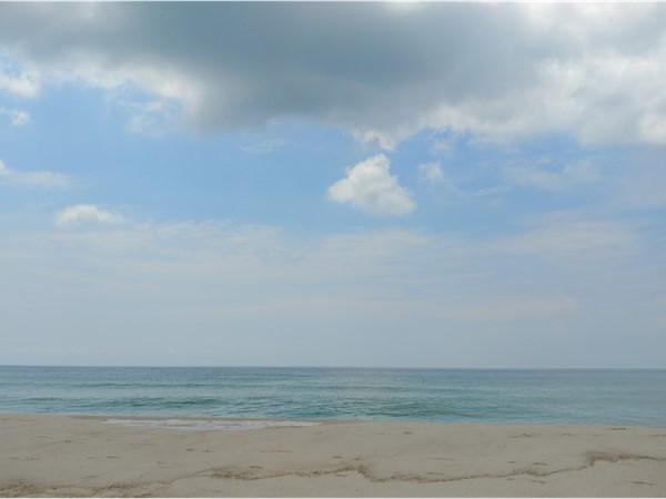 Beach day at Orange Beach