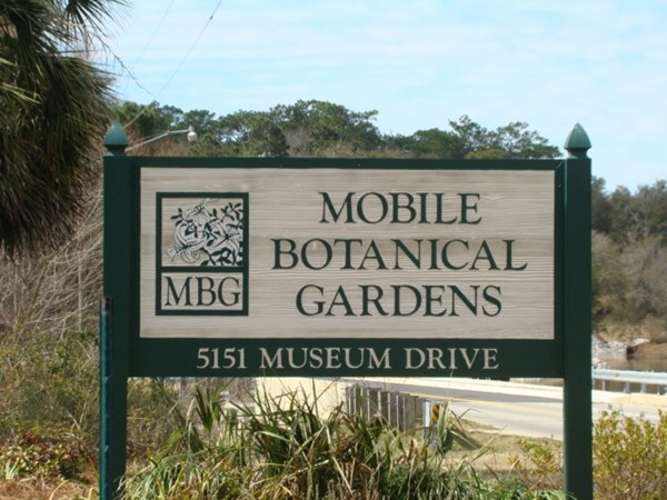 Enter the Mobile Botanical Gardens off Museum Drive and reach it off Springhill Ave.