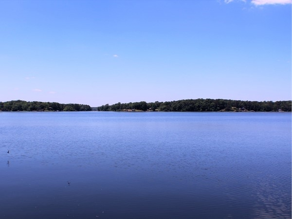 Beautiful Lake Jordan in Elmore County