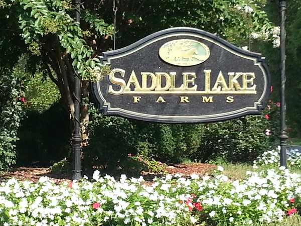 Alabaster's hidden treasure: Saddle Lake Farms