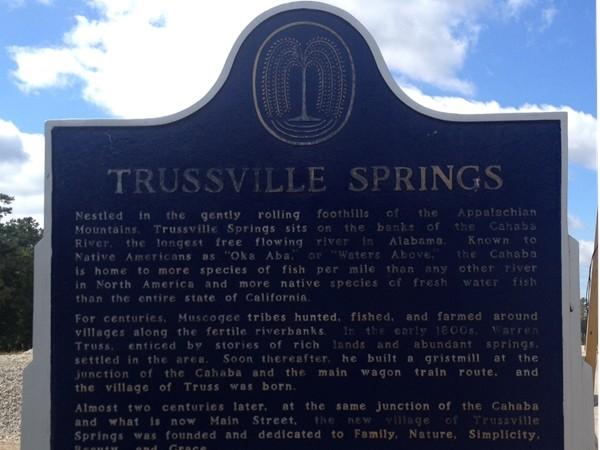 Trussville Springs