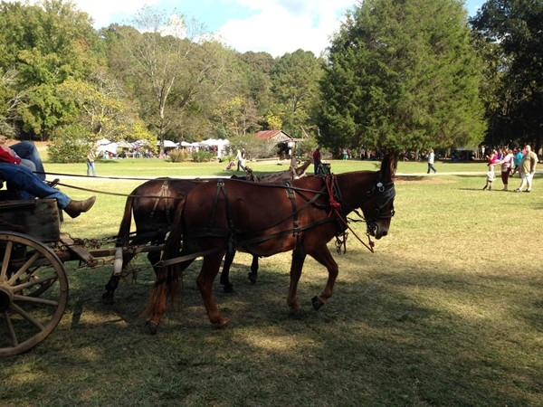 Enjoying a wagon ride at Homestead Hollow