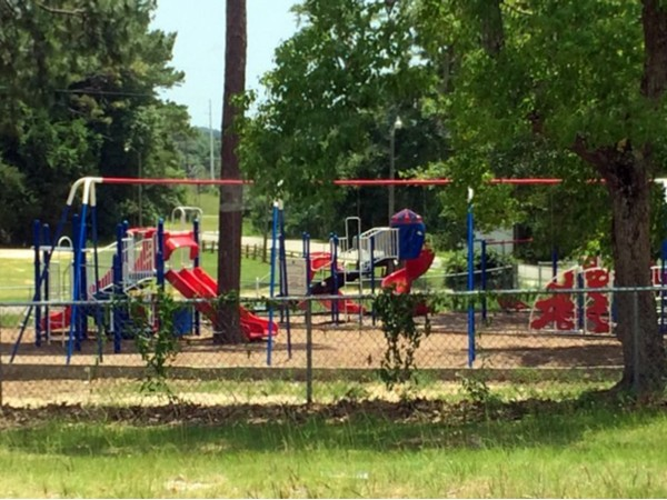 Spanish Fort Elementary School has an emmense playground that the students love to play on!