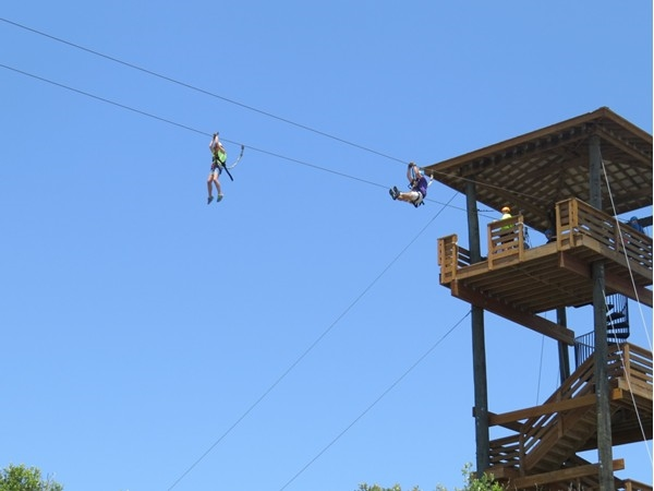 Have you Zipped today?  Gulf State Park Hummingbird Ziplines will thrill you over land, sand & sea!