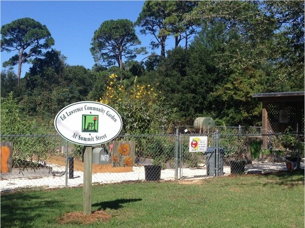 Plots up for adoption at Fairhope's Community Garden Downtown