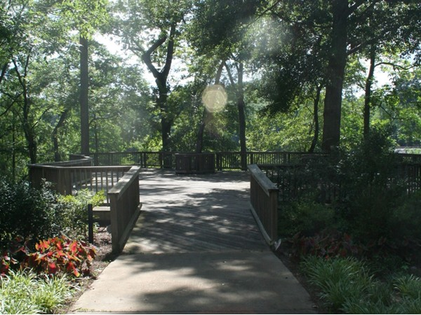 Peaceful walk through Gold Star Park