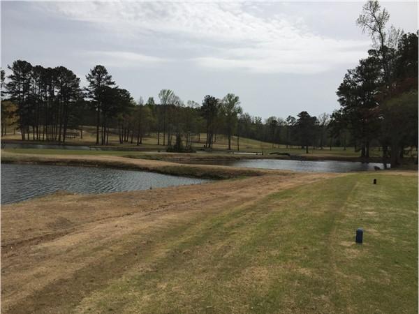Enjoying a beautiful spring day of golf in Cullman