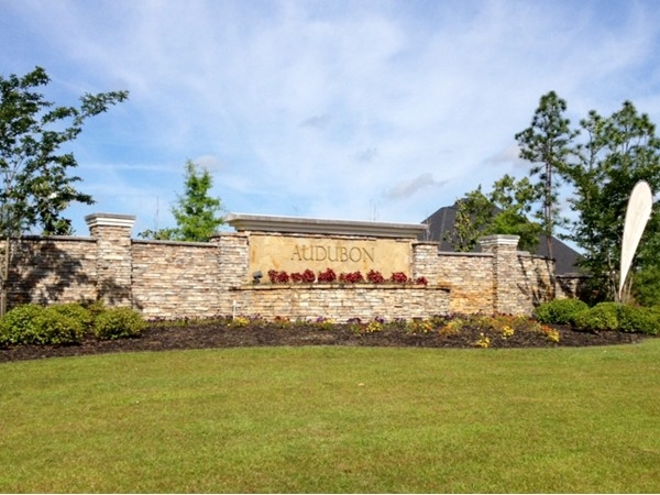 Audubon subdivision real estate homes for sale in for Landscaping rocks tuscaloosa al