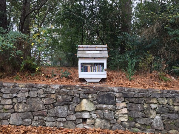 "Bluff Park has a neighborhood ""library"" that's available for all ages. Leave a book, take a book"