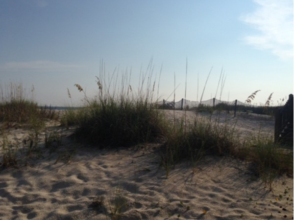 Dunes at Fort Morgan Beach