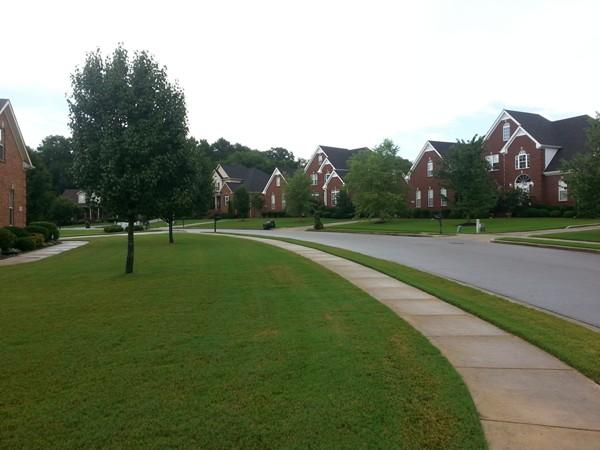 Homes in Magnolia Springs