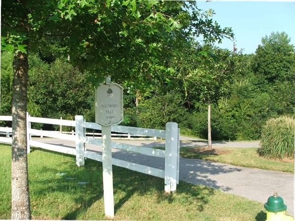 A wooded walkway along the Hillsboro Trail