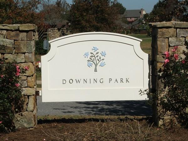 Tannehill Preserve - Downing Park Community