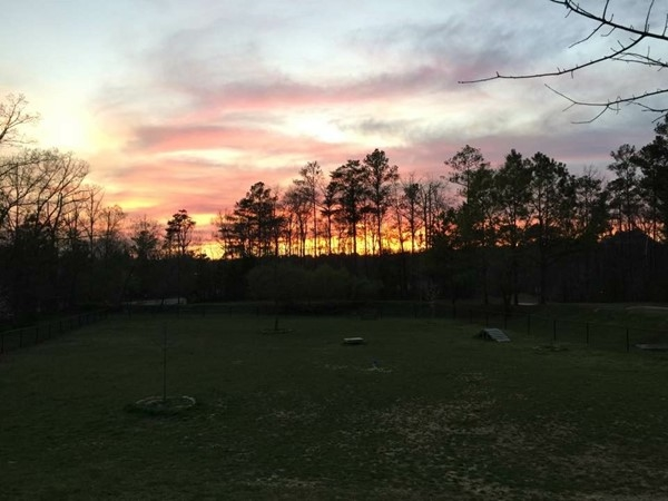 Sunset this evening at Mt Laurel Dog Park was spectacular