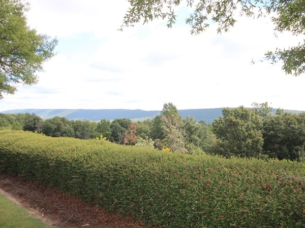 Your view from the entrance drive into Highland Lakes off Highway 280