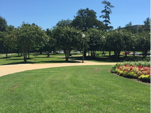 The Park at Manderson Landing
